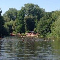 Swimming Hampstead Heath Ponds