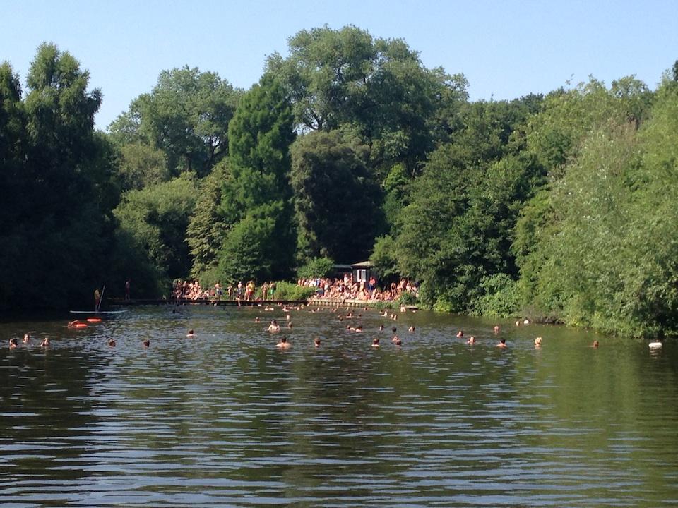 Swimming Hampstead Heath Ponds